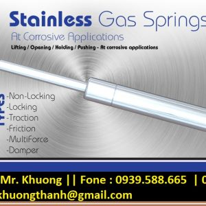 Stainless Gas spring Germany